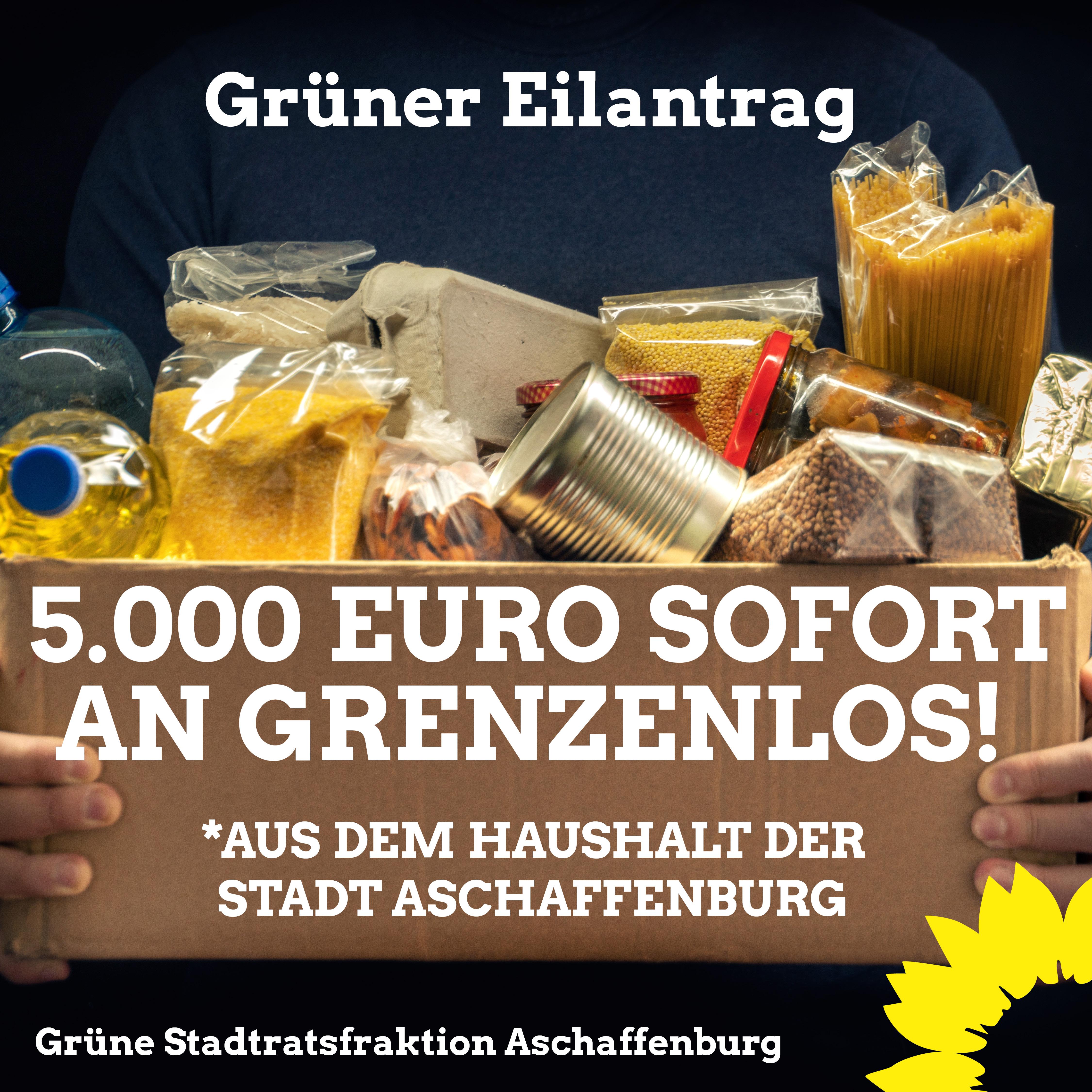 Grüner Eilantrag: 5.000 Euro Soforthilfe der Stadt an Grenzenlos!
