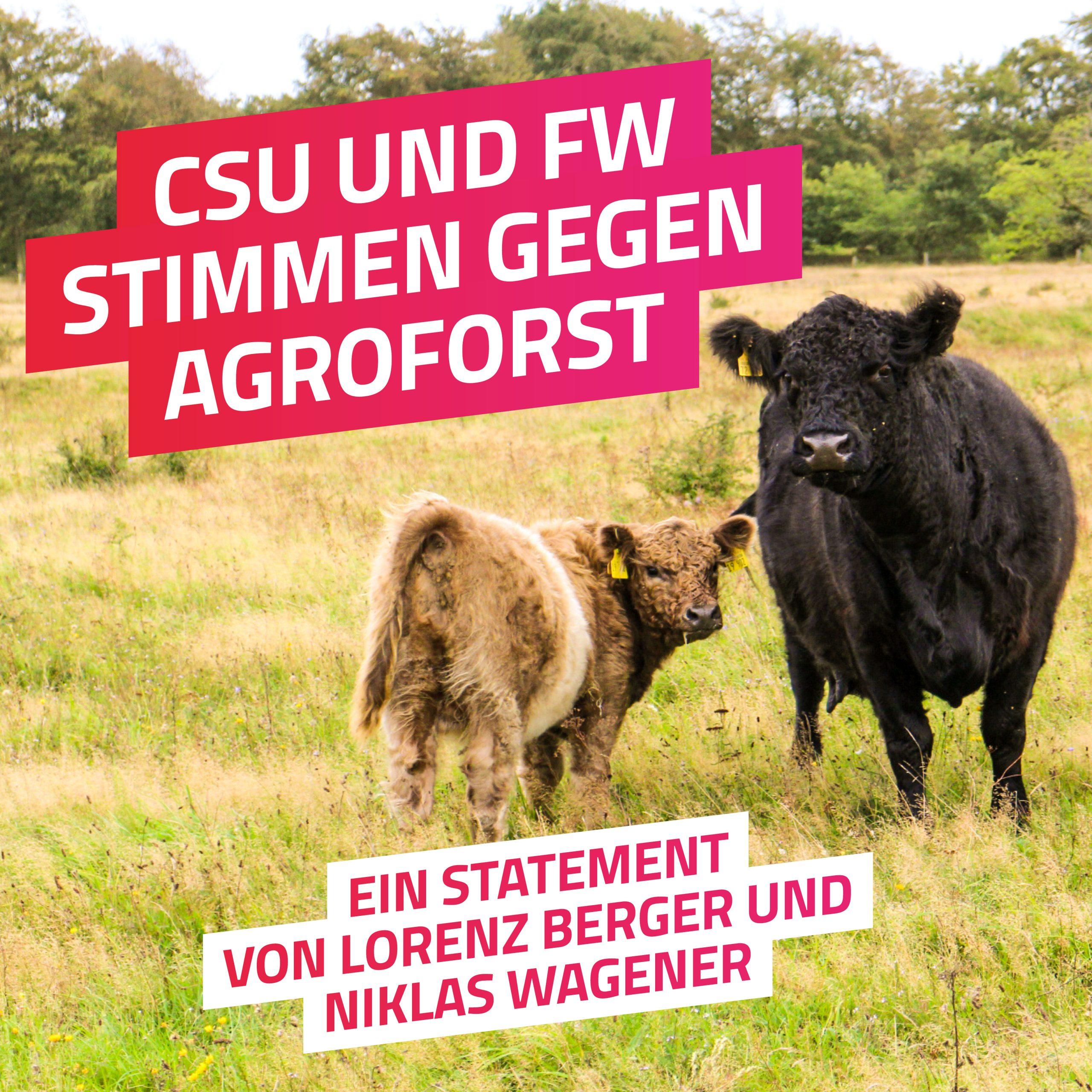 Agroforstforstwirtschaft im Bayerischen Landtag – Grüne Anträge werden abgelehnt.