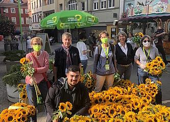Tausend Sonnenblumen strahlen